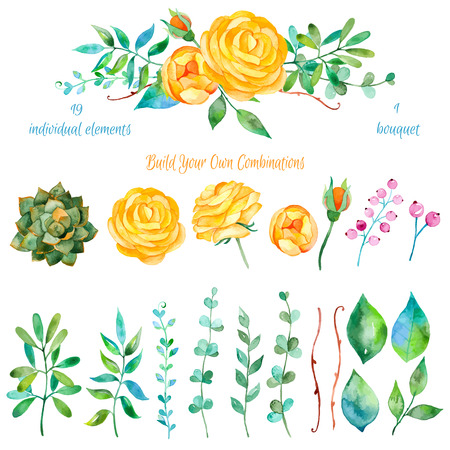 green floral: Vector floral set.Colorful floral collection with leaves and flowers drawing watercolor.Colorful floral collection with beautiful flowers 1 bouquet.Set of floral elements for your compositions.