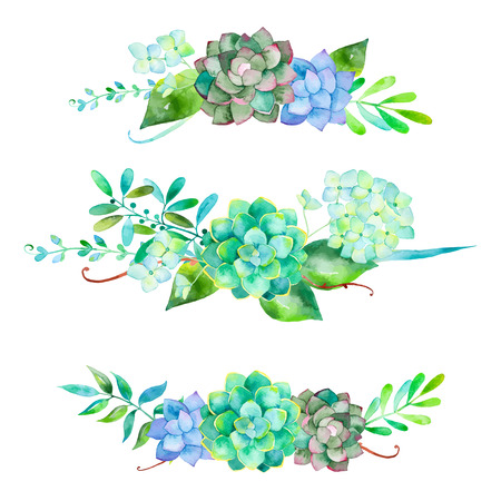 succulent: Vector flowers set. Colorful floral collection with leaves and flowers. 3 beautiful bouquet for your design with hydrangea leaves berries and succulent plants