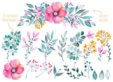 bouquet fleur: Vector floral set.Colorful collection florale pourpre avec des feuilles et des fleurs, le dessin collection watercolor.Colorful floral flowers1 bouquet.Set de beaux �l�ments floraux pour vos compositions.