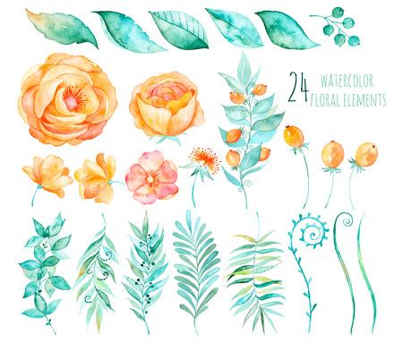 バラ、葉、果実、枝、他とカラフルな花のコレクション。手のデザイン。ベクター描画あなたの組成のための花のコレクションです。明るい色の水