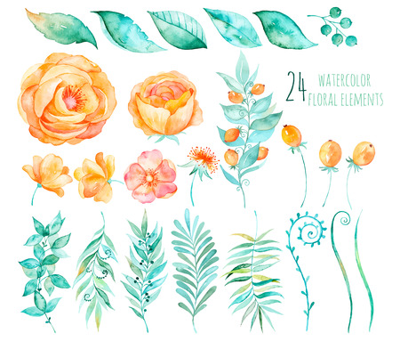 Colorful floral collection with roses, leaves, berries, branches and others.Hand design.Vector drawn floral collection for your compositions.Bright colors watercolor, spring-summer botanical Elements Ilustracja