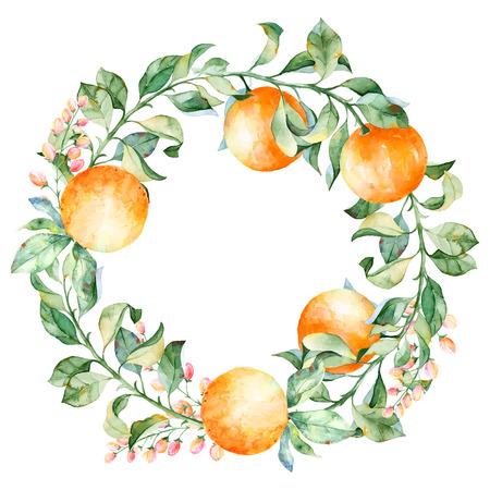 Vecteur ronde cadre de l'aquarelle orange et fleurs. Illustration d'aquarelle couronne de mandarine et de feuilles. Peut être utilisé comme une carte de voeux pour le fond, anniversaire, le jour de mère et ainsi de suite. Banque d'images - 43639584