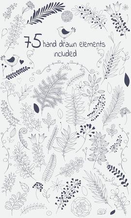 El kit de herramientas de diseño vectorial incluye 75 individuos florales elementos elements.This dibujados a mano vienen en versión negro para su propio design.Big establecer elementos florales con flores, hojas, bayas y así on.Creating su diseño con hojas y flores será un ef Foto de archivo - 44109092