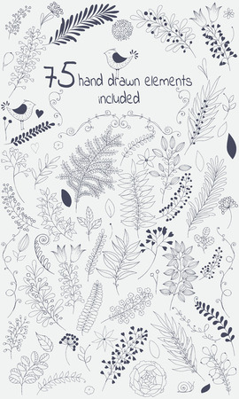 The vector design toolkit includes 75 individuals floral hand drawn elements.This elements come in black version for your own design.Big set floral elements with flowers, leaves, berries and so on.Creating your design with leaves and flowers will be a eff