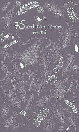 come in: The vector design toolkit includes 75 individuals floral hand drawn elements.This elements come in white version for your own design.Big set floral elements with flowers, leaves, berries and so on.Creating your design with leaves and flowers will be a eff Illustration
