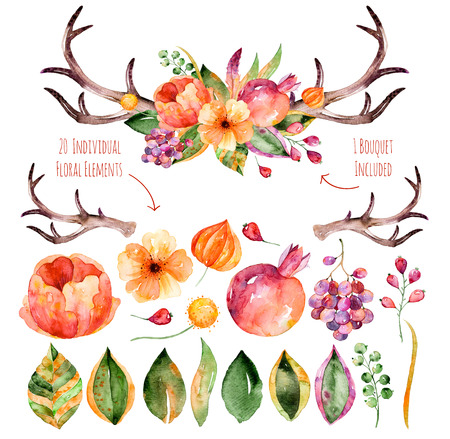 pomegranates: Vector floral set.Colorful purple floral collection with leaves, horns and flowers, drawing watercolorcolorful floral bouquet with leaves, horns and flowers.Set of floral elements for your compositions Stock Photo