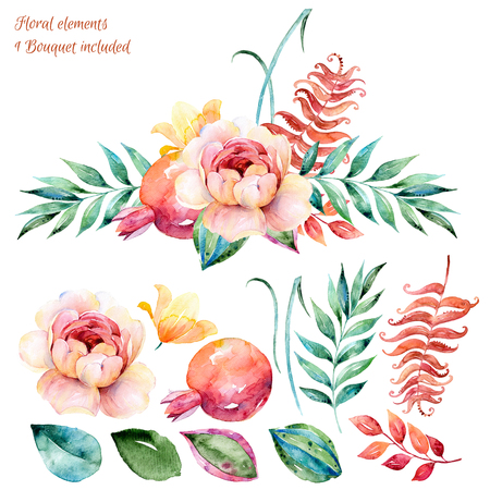 pomegranates: Floral set.Colorful white-purple floral collection with leaves and roses, drawing watercolor.Colorful collection with floral flowersbeautiful bouquet.Set floral elements for your compositions.