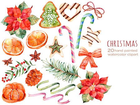 flower clip art: Christmas collection: sweets, poinsettia, anise, orange, pine cone, ribbons, christmas cakes.You can create own patterns, greeting cards, invitations, party design, decorate blog, anything on the Christmas theme