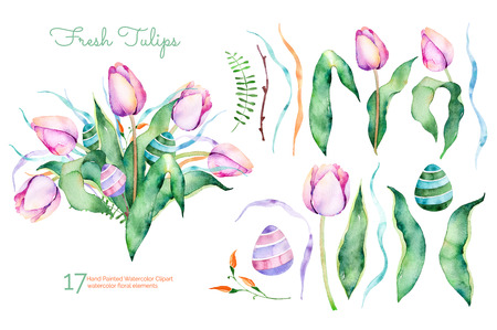 foliage: Delicate floral spring collection with tulips, leaves, branches, floral easter eggs.Purple 17watercolor Elements collection with pre-made and beautiful bouquet.Set of floral elements for your composition