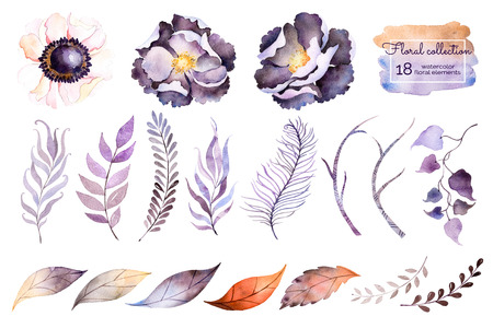 Aquarellsammlung mit Blume, Blätter, Niederlassung, Feder. Handgemalt mit Elementen des Aquarells 18. Stellen Sie Sammlung Florenelemente für Ihre Zusammensetzung ein. Kann für Hochzeitseinladung verwendet werden Standard-Bild - 51518322
