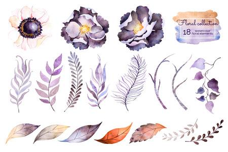 Colección de la acuarela con la flor, hojas, rama, feather.Hand pintado con 18watercolor colección elements.Set de los elementos florales para su composition.Can ser utilizado para la invitación de boda Foto de archivo - 51518322