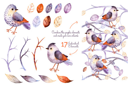 Watercolor collection with birds, leaves, branche.Hand painted with 17watercolor elements.Set collection of floral elements for your composition.Can be used for invitation, pattern, blogs