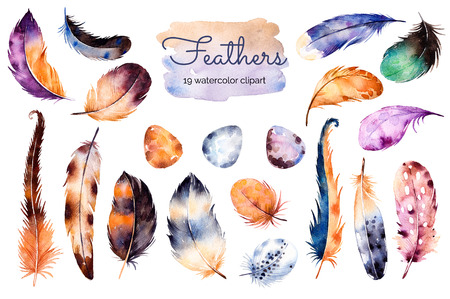 Hand painted watercolor set with 19 Elements; feathers and eggs. Hand drawn collection with colorful feathers and eggs.Feather isolated on white background. Can be used for your own stage, blogs, print Archivio Fotografico