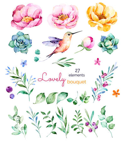 lavander: Foral collection with flowers, roses, leaves, branches, berries, succulents, hummingbird and floral more.Colorful collection with 27 floral watercolor elements.Set of elements.Lovely Bouquet collection