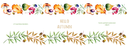 blackberries: 2 Colorful autumn seamless border with autumn leaves, flowers, branch, berries, acorn, mushrooms, blackberries, golden leaves.Colorful illustration.Perfect for frames, quotes, border, blogs, ornaments