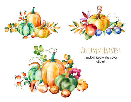 Colorful autumn collection with fall leaves, branches, berry, blackberry, mushroom, pumpkins, walnut, pomegranate, plums and more.3 beautiful bouquet for your own design.Autumn harvest.For create your single