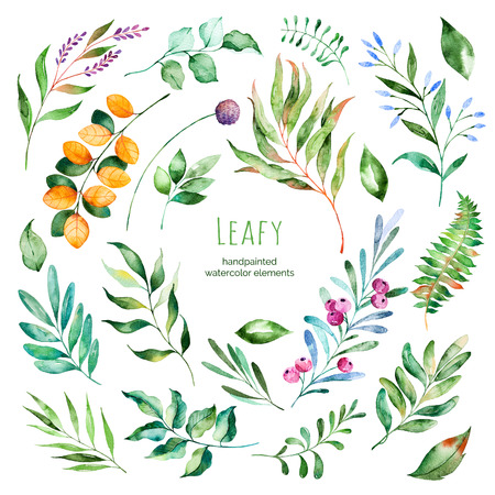Leafy collection.22 Handpainted floral watercolor elements.Watercolor leaves, branches, berries, foliage.Perfect for you single projects, template, wedding invitations, greeting cards, graphic, quotes, poster Imagens - 59926833