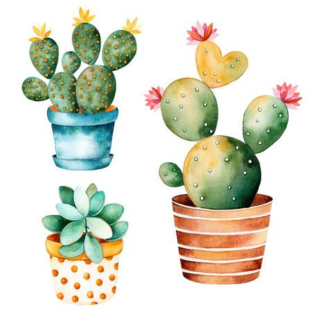 수채화 지에 handpainted 식물 선인장과 클립 아트 pot.Watercolor에서 즙이 많은 식물은, 개별 꽃 냄비 프로젝트, 커버, 벽지, 패턴, 선물 종이, 결혼식을 위해