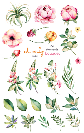 Foral collection with flower, peonies, leaves, branches, lupine, plant air, field bindweed, strawberry and more.Colorful collection with 24 floral watercolor elements.Set of elements.Lovely Bouquet collection