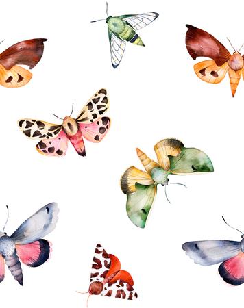Papillons et mites sur la texture blanche. aquarelle fond transparent Handpainted. Parfait pour vous seul établissement, impression, papier peint, carte de voeux, invitations, etc. Banque d'images - 64216710