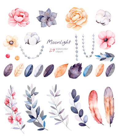 Beautiful winter collection with branches, cotton plants, flowers, strings of pearls, colorful floral leaves.Winter collection with 29 floral watercolor elements.Set of elements.Moonlight collection.