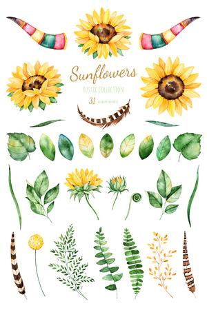 Handbemalte Aquarell sunflowers.31 Cliparts helles Aquarell von Sonnenblumen, Blätter, Zweige, Federn, Hirschgeweih. Kann für Ihr Projekt, Grußkarten, Hochzeit, Karten, Sträuße, Kränze, Einladung verwendet werden Standard-Bild - 71153372