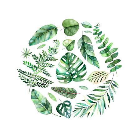 Kleurrijke aquarel ronde frame grens met kleurrijke tropische bladeren. Tropische boscollectie. Perfect voor bruiloft, frame, citaten, patroon, wenskaart, logo, uitnodigingen, belettering etc. Stockfoto