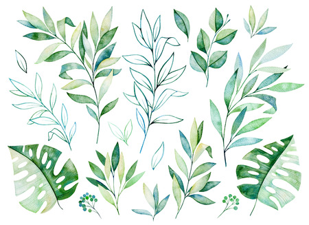 Aquarel greens collectie.Textuur met greens, tak, bladeren, tropische bladeren, gebladerte.Perfect voor bruiloft, uitnodigingen, wenskaarten, citaten, patroon, boeket, logo's, verjaardagskaarten, je unieke creatie etc.
