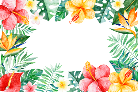 Watercolor tropical border frame.Texture with greens, branch, exotic flowers, tropical leaves, foliage, palm leaves.Perfect for wedding, invitations, greeting cards, quotes, pattern, logos, birthday cards, print