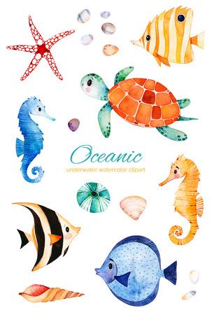 Oceanisch wezen aquarel set. Onderwater handgeschilderde veelkleurige koraalvissen. Zeepaardje, schildpad enz. Perfect voor uitnodigingen, feestdecoraties, afdrukbare, ambachtelijke project, wenskaarten, blogs, stickers Stockfoto
