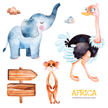 Africa watercolor set.Safari collection with ostrich, elephant, meercat, wooden sign, cute stones.Watercolor animals.Perfect for wallpaper, print, packaging, invitations, baby shower, patterns, travel, etc.