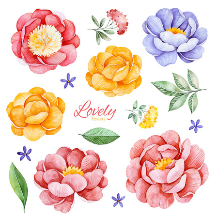 Handpainted romantic set with watercolor peonies, flowers, roses and leaves.15 lovely clipart isolated.Perfect your project, greeting cards, wedding, Birthday cards, bouquets, wreaths, invitations, logos