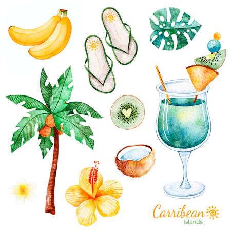 Summer collection with exotic fruits, plum tree, hibiscus flower, tropical leaf, plumeria flower, cocktail, flat slippers shoes.Perfect for wedding, invitations, greeting card, quotes, pattern, logos,
