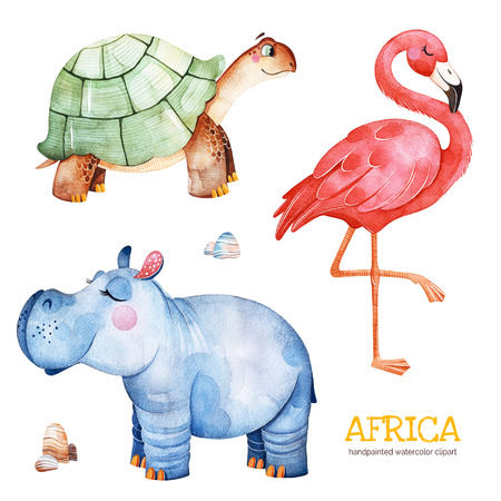 Africa watercolor set.Safari collection with flamingo, hippo, turtle, stones.Watercolor cute animals.Perfect for wallpaper, print, packaging, invitations, baby shower, patterns, travel, logos etc.