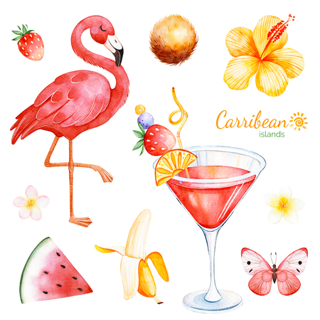 Summer collection with exotic fruit, flamingo, hibiscus flower, tropical butterfly, plumeria flower, cocktail.Perfect for wedding, invitations, greeting card, quotes, pattern, logos, wedding, party etc