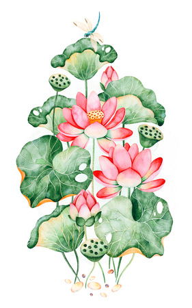 Beautiful watercolor illustration.Lotus bouquet on white background with water lilies and dragonflies.Perfect for your project, wedding, packaging, wallpaper, cover design, logo, print etc Foto de archivo - 106973720
