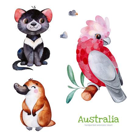 Australia watercolor set.Cute collection with Tasmanian devil, platypus, cockatoo, stones.Watercolor cute animals.Perfect for wallpaper, print, packaging, invitations, baby shower, patterns, travel, logos etc Foto de archivo - 118653085