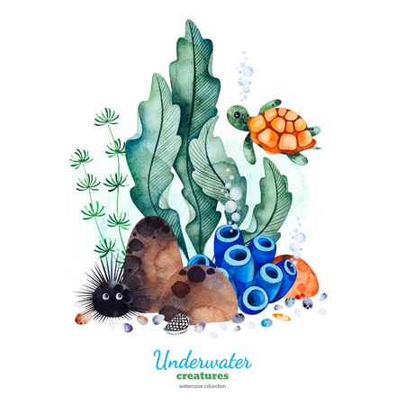 Underwater creatures.Watercolor composition with multicolored corals, seashells, seaweeds and turtle.Perfect for invitations, party decorations, printable, craft project, greeting cards, blog, texture.