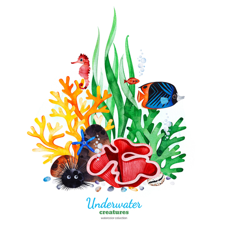 Underwater creatures.Watercolor composition with multicolored corals, seashells, seaweeds and turtle.Perfect for invitations, party decorations, printable, craft project, greeting cards, blog, texture
