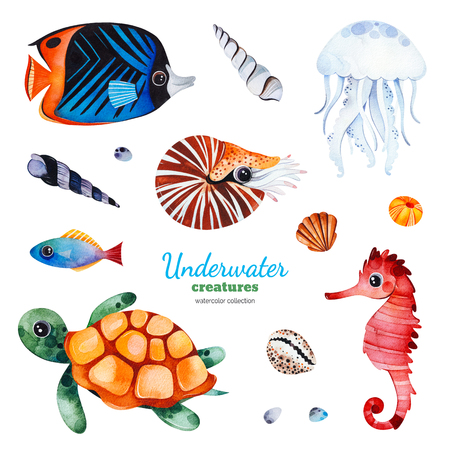 Underwater creatures Watercolor collection with multicolored coral fish.shells, turtle, jellyfish, seahorse, nautilus etc.Perfect for invitations, party decorations, craft project, greeting card, blog, sticker Banco de Imagens