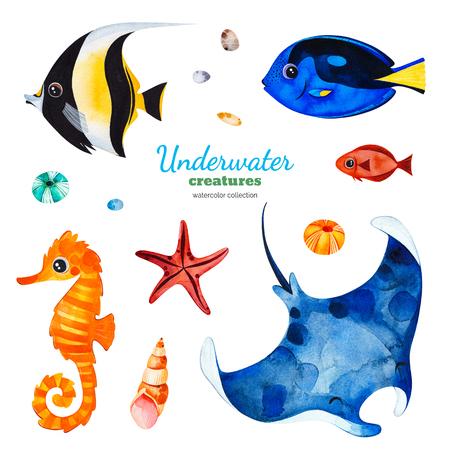 Criaturas submarinas. Colección de acuarelas con peces de coral multicolores, conchas, caballitos de mar, estrellas de mar, etc. Perfecto para invitaciones, decoraciones para fiestas, imprimibles, proyectos de manualidades, tarjetas de felicitación, blogs, sticke Foto de archivo