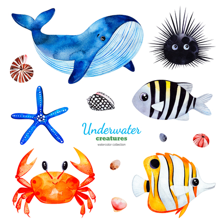 Underwater creatures.Watercolor collection with multicolored coral fishes.shells, crab, whale, starfish, urchin etc. Perfect for invitations, party decorations, printable, craft project, greeting cards, sticker