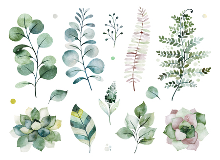 Watercolor green collection.Texture with greens, succulents, leaves, fern leaves, foliage.Perfect for wedding, invitations, greeting cards, quotes, patterns, bouquets, logos, Birthday cards, your uniq