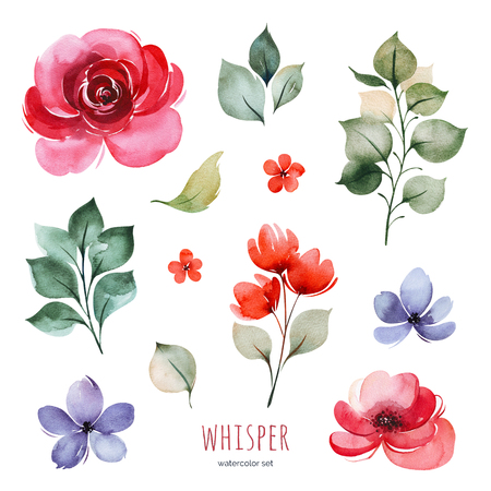 Handpainted watercolor set with peonies, flowers, braches and leaves. Bright texture.Perfect your project, greeting cards, wedding, Birthday cards, bouquets, wreaths, invitations, logos, wallpapers and more