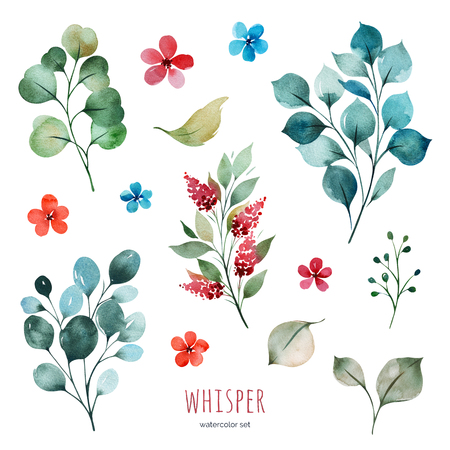 Handpainted watercolor set with flowers, braches and leaves. Bright texture.Perfect your project, greeting cards, wedding, Birthday cards, bouquets, wreaths, invitations, logos, wallpapers and more