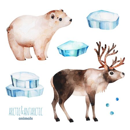 Watercolor set with cute polar bear and reindeer .Cartoon arctic and antarctic animals.Perfect for your project, print, scrapbook, baby shower, Birthday card, invitations, greeting card and much more.