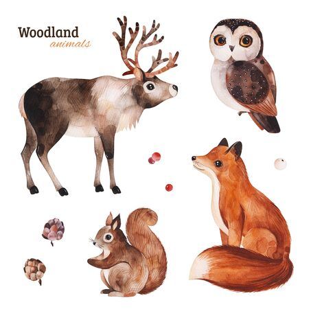 Woodland set with cute reindeer, fox, owl and squirrel.Cartoon winter animals.Perfect for your project, print, scrapbook, baby shower, Birthday card, invitations, greeting card, Christmas and much more