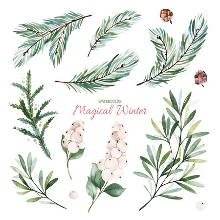 Christmas and New Year collection. Botanical set with leaves, mistletoe, berries, conifer branches.Handpainted watercolor elements.Perfect for invitations, greeting cards, bouquets, patterns, wedding Stock Photo