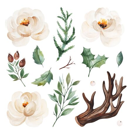 Christmas and New Year collection. Botanical set with leaves, branches, horn, berries, conifer, white roses.Handpainted watercolor elements.Perfect for invitations, greeting cards, bouquets, patterns, wedding