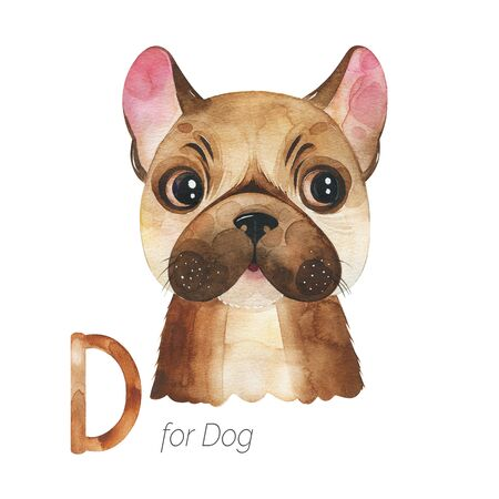 Watercolor Animals Alphabet.Learn letters with funny animals. Cute Dog for D letter. Perfect for education, baby shower, children prints or room decor, template cards, books and much more Stockfoto - 136111941